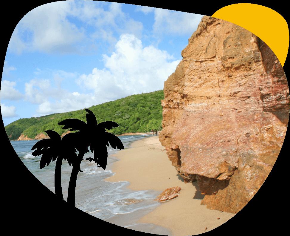 Louer une voiture en Martinique - Caravelle Location